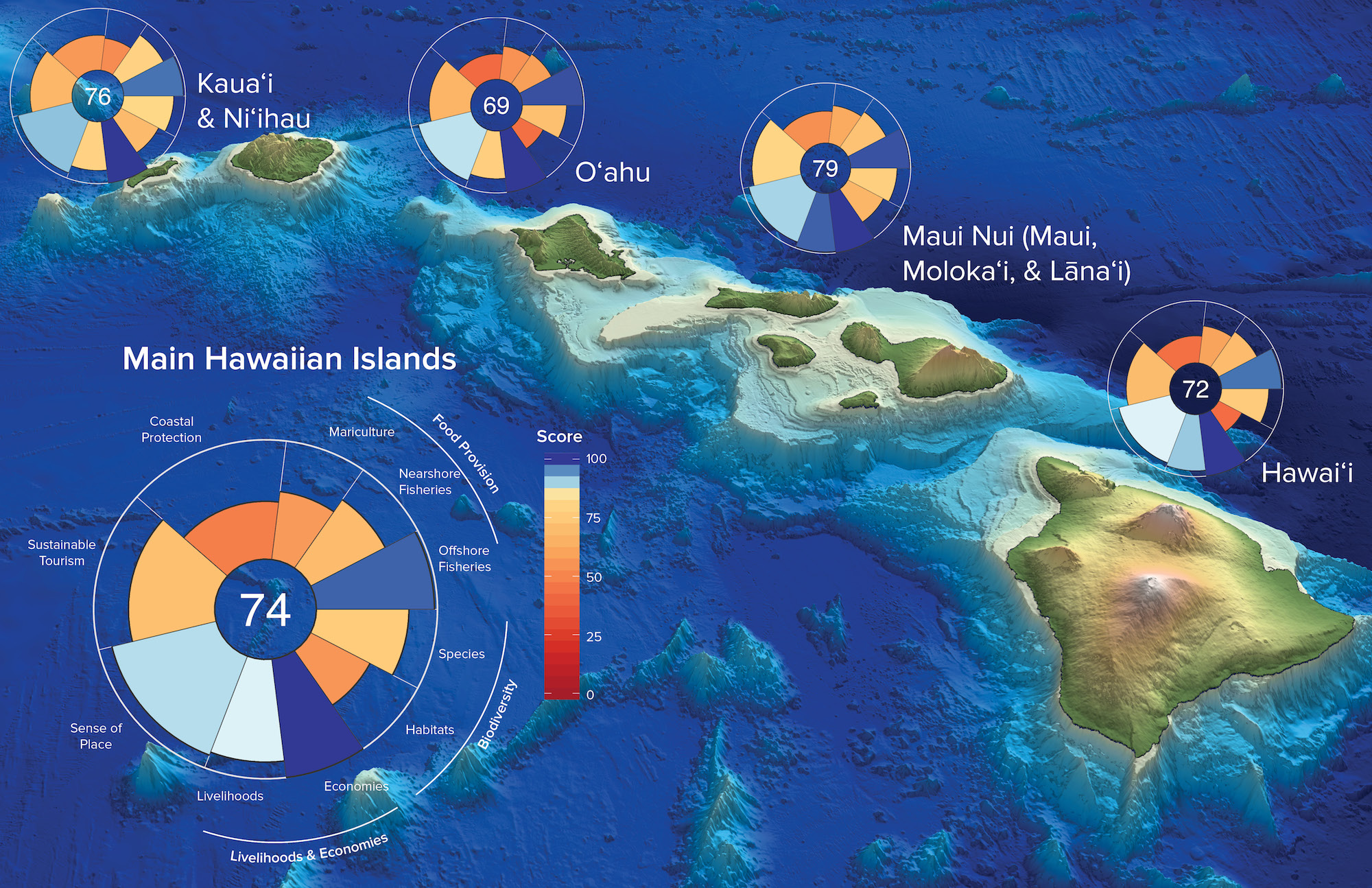 The Ocean Health Index scores for Hawaii's main islands.