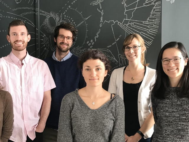 group of data science fellows