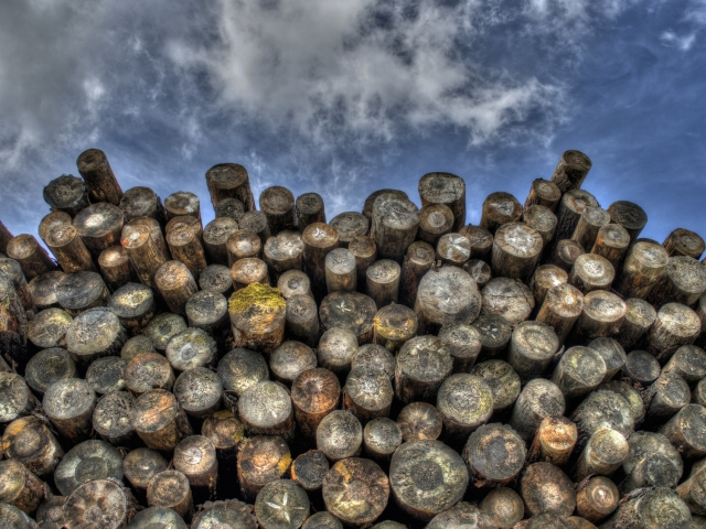 stacked logs and sky