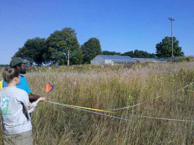 researchers setting up plots in grassland