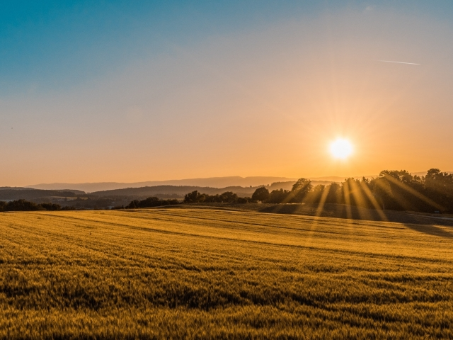 Sun shines over a farm field