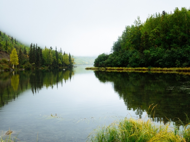 lake with forest reflecting in water