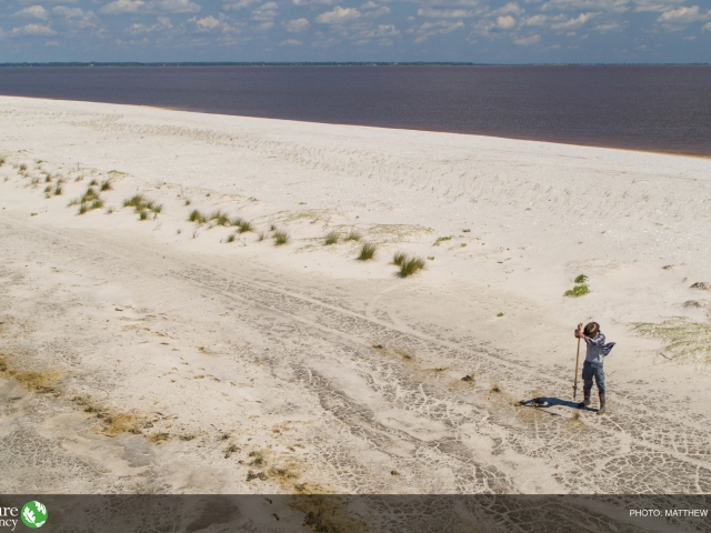 Person restoring a beach