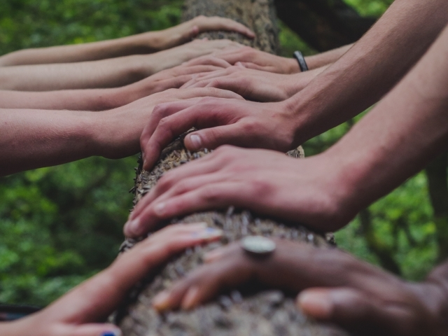 hands together on a log