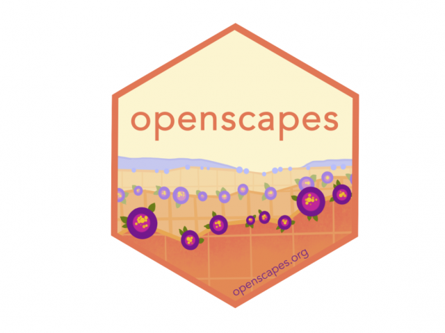 Openscapes Hexagon