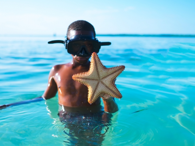 boy in ocean with starfish