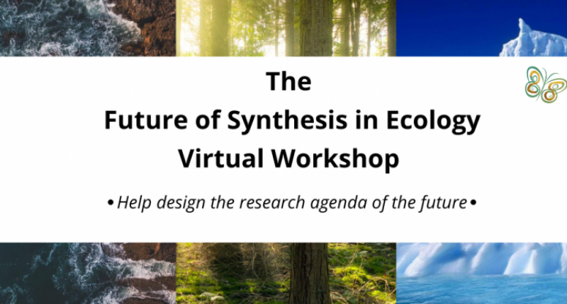 ecosystems with text