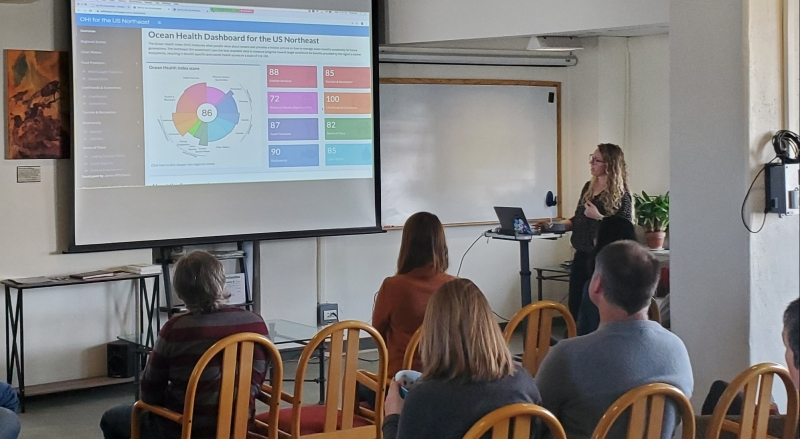 Woman giving presentation with slides on a screen