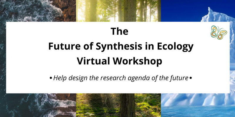 synthesis workshop ad